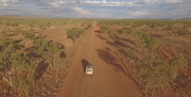 outback gibb